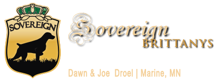 Sovereign Brittany Logo | AKC Breeder of Merit