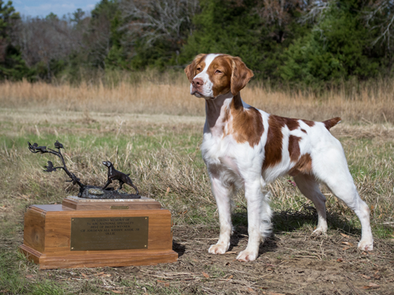 Hobey with National Specialty Trophy.